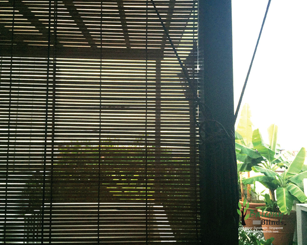 Outdoor Bamboo Chick Blinds Gallery Balconyblinds