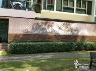 Outdoor Bamboo Blinds for Home Balcony with Brown Backing